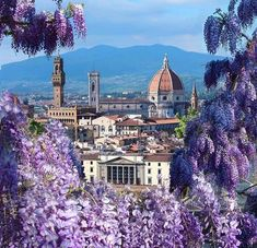 [New] The 10 Best Travel (with Pictures) - Spring vibes Florence Italy Photo: travelgram_ov Sorrento Italy, Italy Vacation, Italy Travel, Wonderful Places, Beautiful Places, Italy Landscape, Desert Landscape, Italy Map, Living In Italy