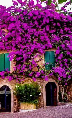Hello Spring, Prayer, Plants, Beautiful, Balconies, Windows, Doors, Eid Prayer, Prayer Request