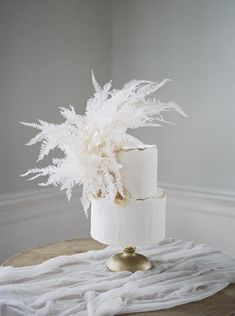 A classically romantic wedding in Charleston isnt complete without lace wedding dresses, and fresh garden roses. Black And White Wedding Cake, Black Wedding Cakes, Fall Wedding Cakes, Beautiful Wedding Cakes, Lace Wedding, Wedding Dresses, Garden Wedding, Unique Wedding Cakes, Wedding Lingerie