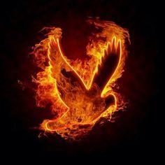 pentecostes lenguas de fuego