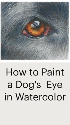 Learn more at rebeccarhodesart.com Watercolor Animals, Watercolor Paintings, Watercolours, Work With Animals, Dog Eyes, Step By Step Painting, Learn To Paint, Dog Art, Painting Techniques