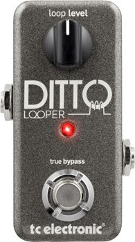 TC Electronic Ditto Looper Guitar Pedal | Sweetwater.com