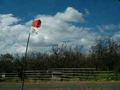 Berkibarlah benderaku!  Lokasi : Kebun Apel di Nongko Jajar, Kabupaten Pasuruan
