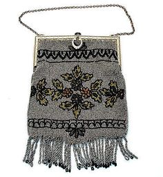 Cut Steel Beaded Fringe Purse Art Nouveau Silver Gilt Frame Floral Antique