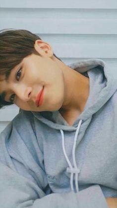like a sugar😾 Jeonghan, Woozi, Joshua Seventeen, Seventeen Debut, Hyungwon, Kpop, Vernon Chwe, Rapper, Kim Min Gyu
