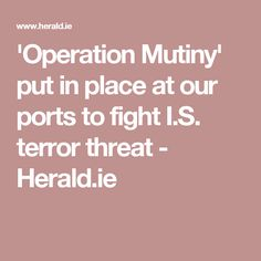 'Operation Mutiny' put in place at our ports to fight I.S. terror threat - Herald.ie
