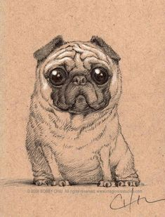 Here's a little pug sketch. I thought of getting a pug before. Mops Tattoo, Pug Tattoo, Pug Mug, Fu Dog, Pugs And Kisses, Cute Pugs, Funny Pugs, Puppy Care, Drawing Tips