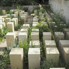 All gardens need to delight us but a great show garden probably needs to challenge us too. This one from James Basson at #rhschelsea2017 managed to do both drawing inspiration from a disused stone quarry in Malta. Nature reclaiming her space. I enjoyed it and can see why it won Best in Show. #mystoryoflight #peninpractice #olympusuk #tostandandstare