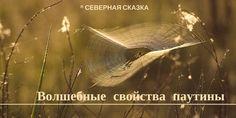Белая магия славян. Постигаем тайны волхования.