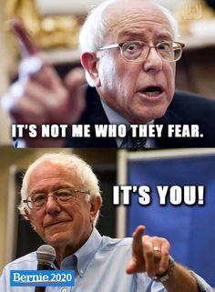 Bernie Sanders For President, Democratic Party, Presidents, Politics, Gender, Feelings, Words, Horse, Music Genre