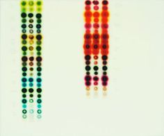 """Jaq Chartier  formatting  Color Chart w/ 20 Stains , 2008  acrylic, stains, and paint on wood panel  20"""" x 24"""""""