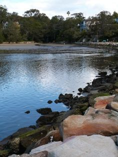Peaceful beaches on the Manly to Spit walk