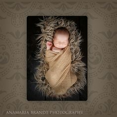 Baby Book Sample Pages  Ana Brandt Photography