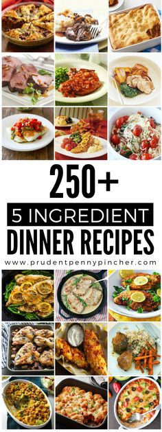 250 5-Ingredient Dinner Recipes