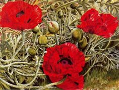 Poppies - Stanley Spencer