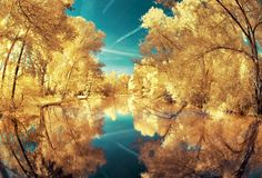 Bubblegum pink grass, canary yellow trees: Breathtaking infra-red photos turn French landscapes into candy-coloured wonderland Glorious nature: This photograph of a landscape in Corbie is dominated by the gold of the trees and the radiant blue of the sky, Infrared Photography, Reflection Photography, Surrealism Photography, Photography Photos, Amazing Photography, Landscape Photography, Nature Photography, Travel Photography, Pink Grass