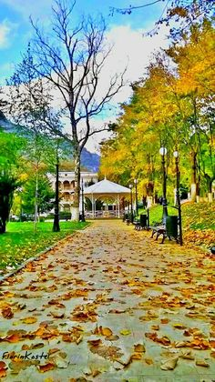 Romania Travel, Autumn, Mansions, House Styles, Nature, Home Decor, Europe, Romania, Naturaleza