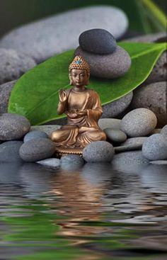 Buddha Zen Garden Mural - Andrea Haase| Murals Your Way