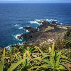 This post details my 10 day Azores itinerary and details my trip summaries, reflections, and tips to help you plan your trip. Best Vacation Spots, Best Vacations, Vacation Destinations, Azores, Plan Your Trip, 10 Days, Places To See, Traveling By Yourself, Travelling