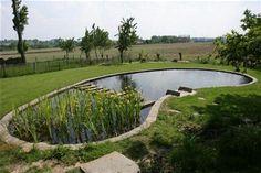 12 beste afbeeldingen van zwemvijver garden pool gardens en in door