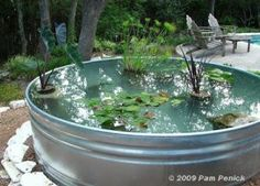 How to make a container pond in a stock tank, DIY Project