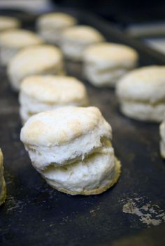 Southern Style Biscuits by Cooking by the seat of our pants