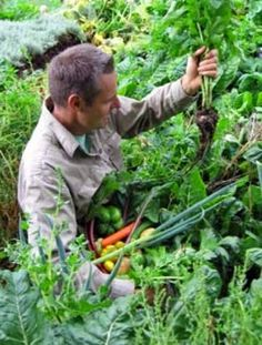 Permaculture - Looking at Organic Gardening and Humans