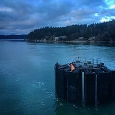Escape to Vashon Island. | 28 Unexpectedly Awesome Things To Do In Seattle