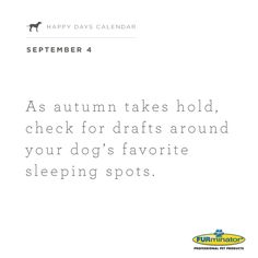 As #autumn takes hold, check for drafts around your dog's favorite sleeping spots.
