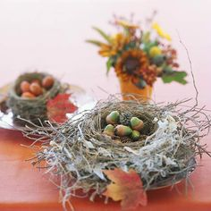 Fall Nest Centerpiece - Give a crafts store bird's nest a fall look by filling it with acorns, seedpods, or other fall gatherings. To paint the acorns, brush or dip the lower half in acrylic paint. Place the nest on a plate to keep things tidy.