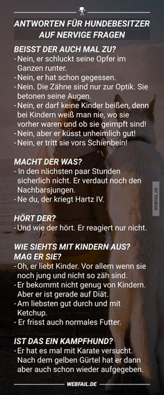 Antworten für Hundebesitzer auf nervige Fragen Answers for dog owners on annoying questions Best April Fools, Funny Memes, Jokes, Dog Games, Baby Dogs, Diy Stuffed Animals, Man Humor, Dog Owners, Funny Cute