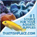 Discount Aquarium Supplies at ThatFishPlace.com