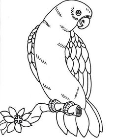 Owl Coloring Pages To Print from Animal Coloring Pages category. Printable coloring sheets for kids that you could print and color. Check out our collection and printing the coloring sheets for free. Butterfly Coloring Page, Free Coloring Sheets, Coloring Pages To Print, Free Printable Coloring Pages, Coloring Book Pages, Coloring Pages For Kids, Bird Patterns, Embroidery Patterns, Gold Embroidery