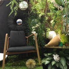 Jungle dinterieur  bon cest un peu trop verdoyant auhellip