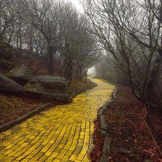 Camino de baldosas amarillas del parque temático abandonado llamado El mundo de Oz. Se encuentra en Carolina del Norte, EE.UU.