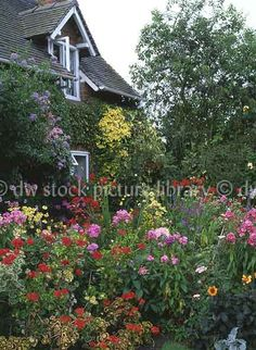 Some Answers To Your Questions English Country Gardens