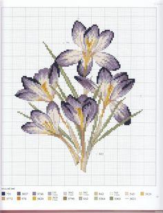 Gallery.ru / Фото #49 - Herbier - Mosca