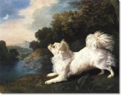 Portrait Of A Spanish Dog by George Stubbs by George Stubbs | Painting