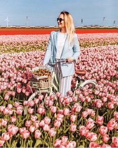 Travel Around The World, Around The Worlds, Holland, Dresses With Sleeves, Long Sleeve, Inspiration, Amsterdam, Fashion, Viajes