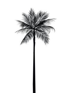 Palm Tree Print Palm Leaves Print Palm Tree door MelindaWoodDesigns