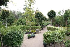 HAVEHJERNEN: Heides planteskole