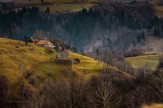 On the side of the hill by Stefan Isarie on 500px