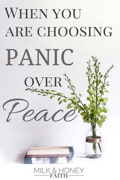 When you are Choosing Panic over Peace - Milk & Honey Faith. Learn how to overcome the feeling of panic in this anxiety-ridden world with the promise of Peace. How to find Peace / God's Peace / Overcome panic