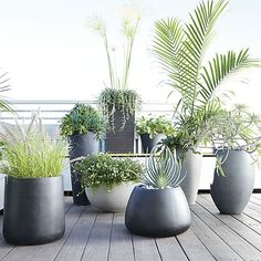 Unique garden design, post makeover number 3401943255 to try now. Large Outdoor Planters, Tall Planters, Modern Planters, Garden Planters, Cement Planters, Black Planters, Plastic Planters, Contemporary Planters, Terrace Garden