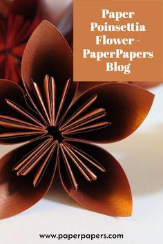 Diy Flowers, Paper Flowers, Poinsettia Flower, Simple Pictures, Diy Origami, Winter Season, Diy Paper, Pearl White, Fun Activities