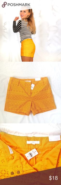 """LOFT Cotton Eyelet Shorts NWT Cotton eyelet shorts from LOFT with a 4"""" inseam. The color (oh that COLOR!) is a vibrant goldenrod. 🍍To qualify for the discount, your Posh profile must reflect your affiliation with one or more of the listed groups! Let me know before purchasing and I'll lower the price🍍 LOFT Shorts"""