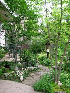 こんばんは、赤土です。   四季辺のお庭レポートブログ