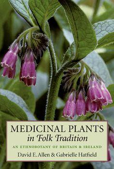 Medicinal Plants in Folk Tradition by David E. Allen and Gabrielle Hatfield