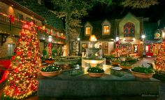 A list of must-see things to do in Pigeon Forge/Gatlinbug during Christmas
