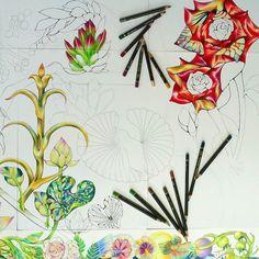 頭の重たい植物はウンチョコピーな咲き方をする  #アート#イラスト#デザイン#花#蓮#バラ#アエオニウム#多肉植物#art#illustration#design#flower#aeonium#rose#lotus#nature#bird  私の花鳥風月は趣もへったくれもない  从_υ从 by akiko.aoyarn